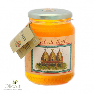 Zitrusfruchthonig Sizilianische Schwarzbiene 1 kg