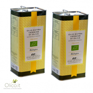 Huile d'Olive Extra Vierge Biologique 5 lt x 2