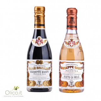 Giusti Vinegar Duo: Balsamic Vinegar of Modena PGI 2 Gold Medals and Apple Vinegar Dressing 250 ml x 2