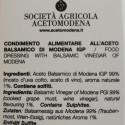 Condimento all' Aceto Balsamico di Modena IGP e Ginger